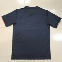 Mexico home 2019 gold cup soccer jerse